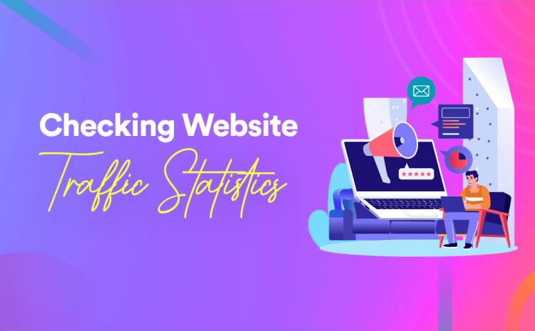 Beginner's Guide for Checking Website Traffic Statistics
